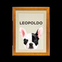 Quadro Personalizado Pet Bulldog Francês