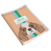 Porta Vacina Pet Cavalier King