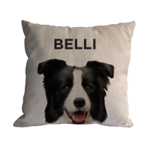 Almofada Personalizada Pet Border Collie